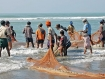 Arakanese Rohingya fishermen are working in shore of Bay of Bengal